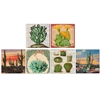 Desert Beauty Square Mini Matchboxes