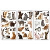 Cats Rule Large Matchbox Asst 24Pk