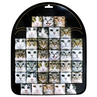 Cat Square Magnet Display