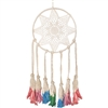 Starbrite Dream Catcher