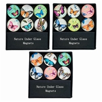Glass Butterfly Magnets Gift Set