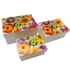 Watercolor Garden Capiz Shell Nesting Boxes