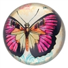 Glass Paperweight Fuschia Butterfly