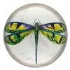 Green Dragonfly Glass Paperweight