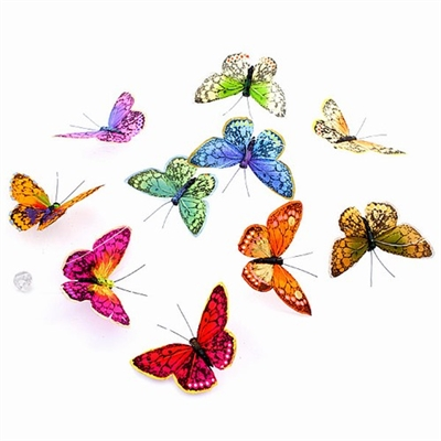 Fall Rainbow Butterfly Garland